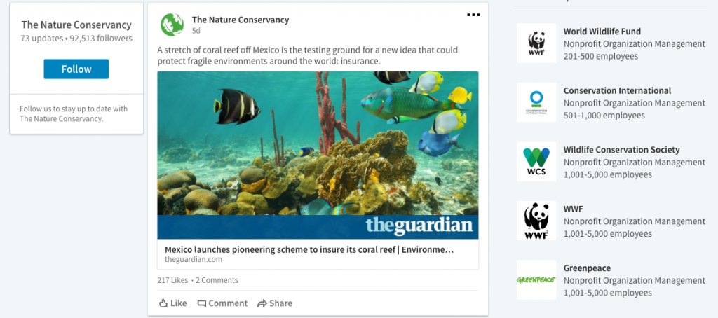 The Nature Conservancy LinkedIn Content Marketing Strategy