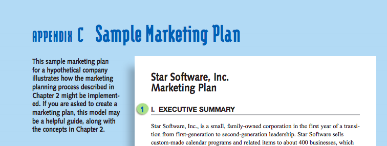 Cengage Content Marketing Plan Example