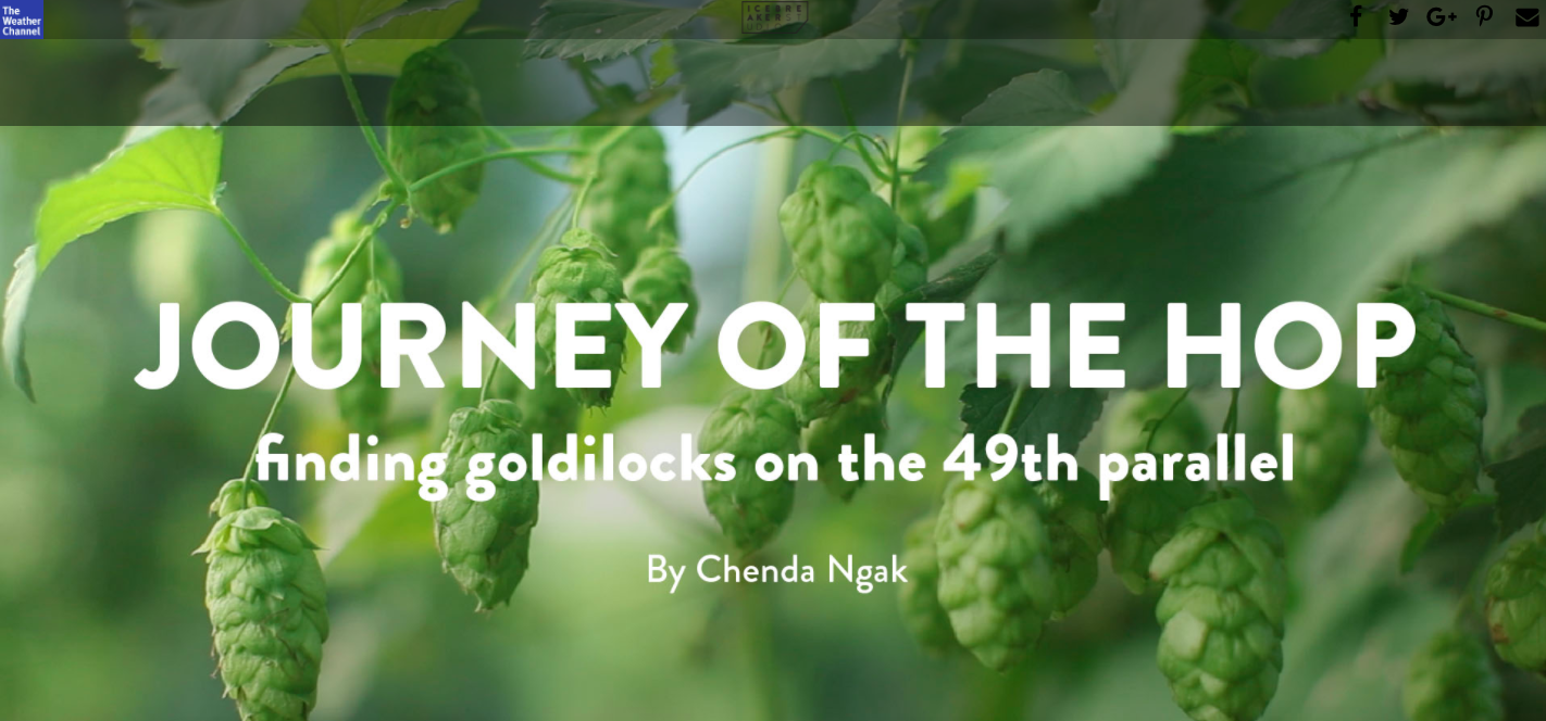 Goose Island Approach B2C Content Marketing