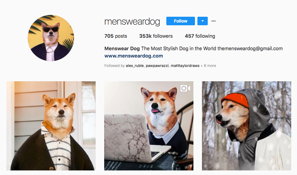 Menswear Dog top pet influencers