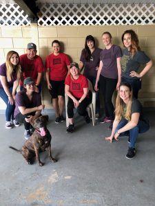 IZEACares Partners With Pet Alliance of Greater Orlando