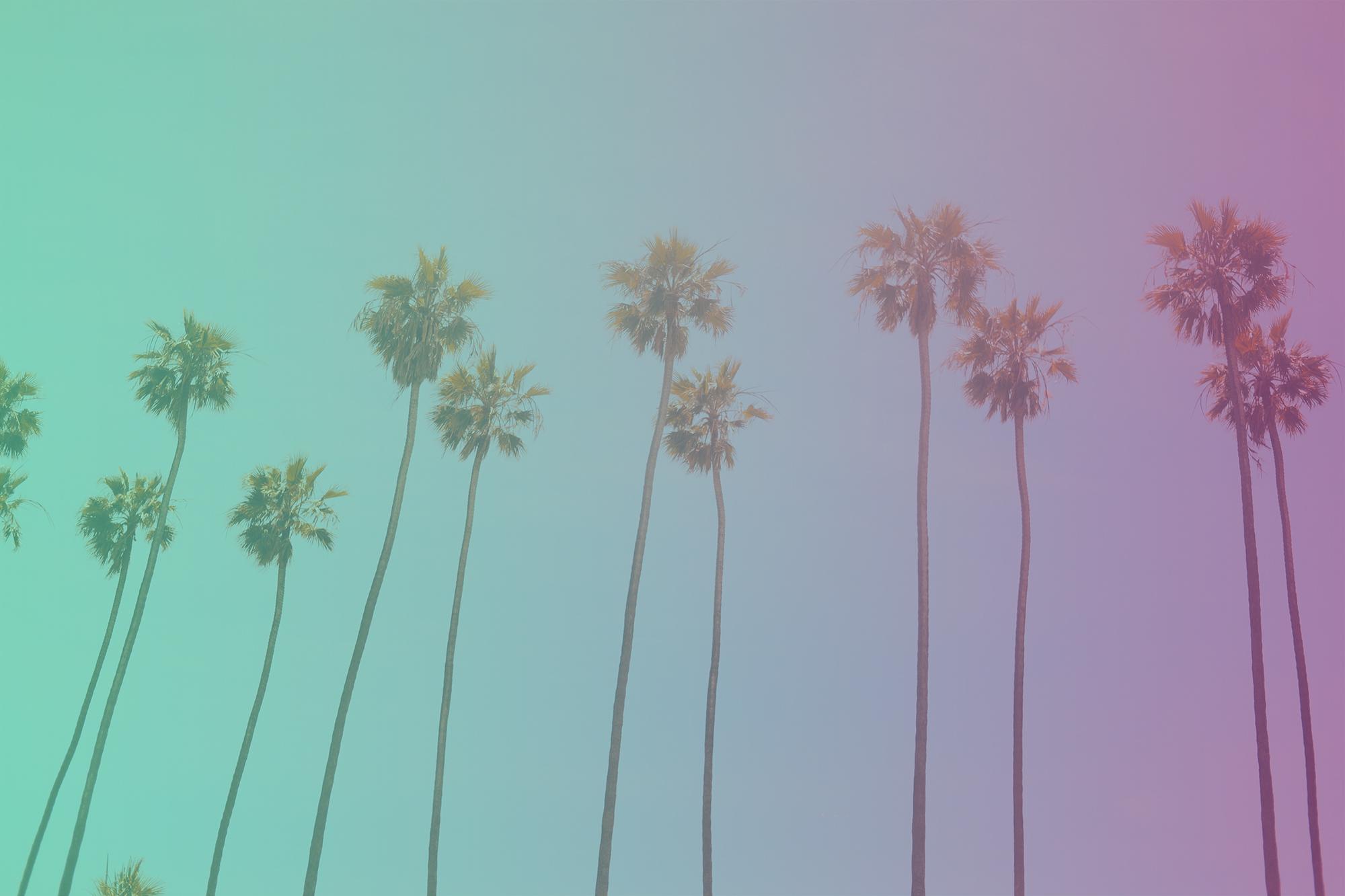california influencers