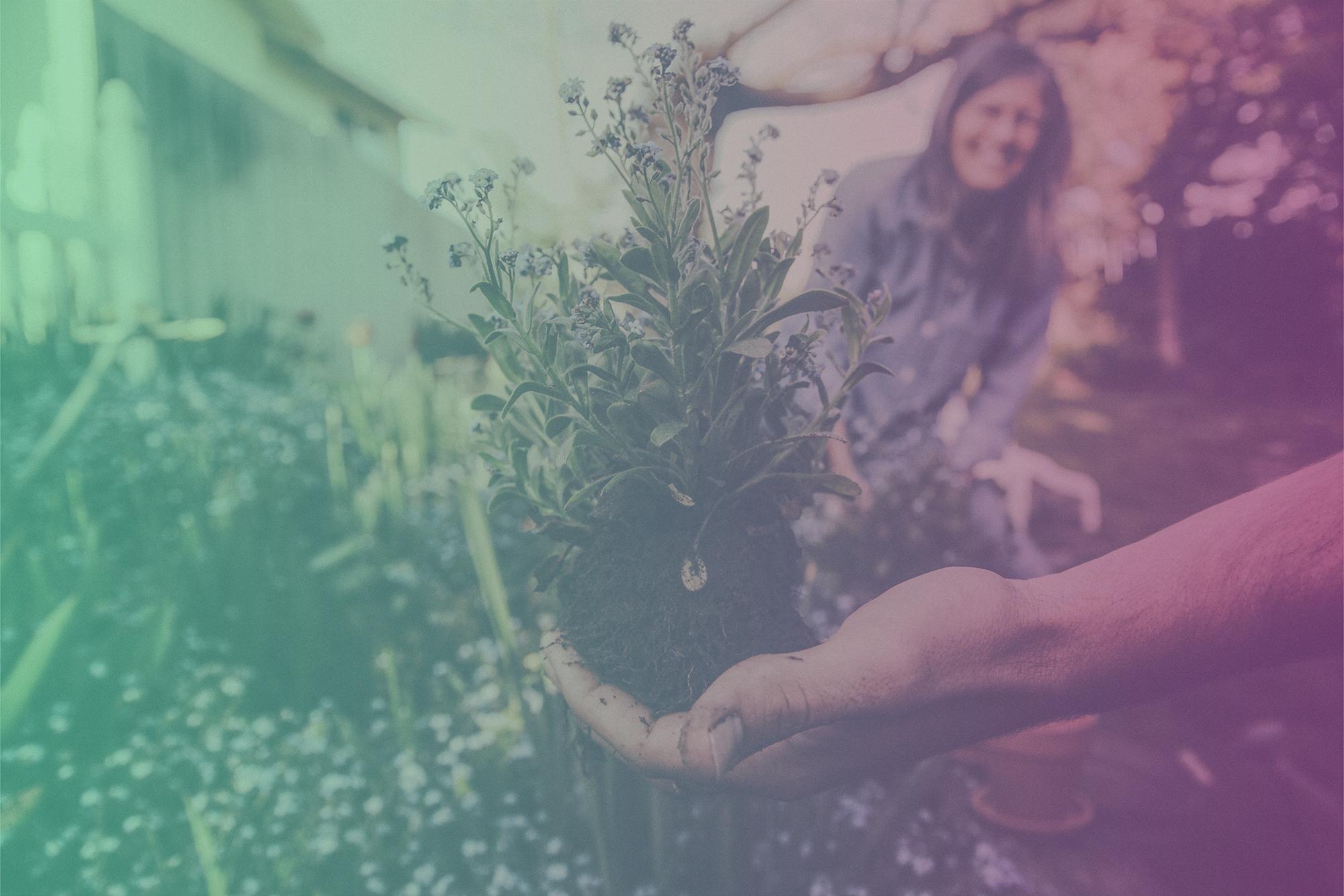 Top Home & Garden Influencers on Instagram 2019