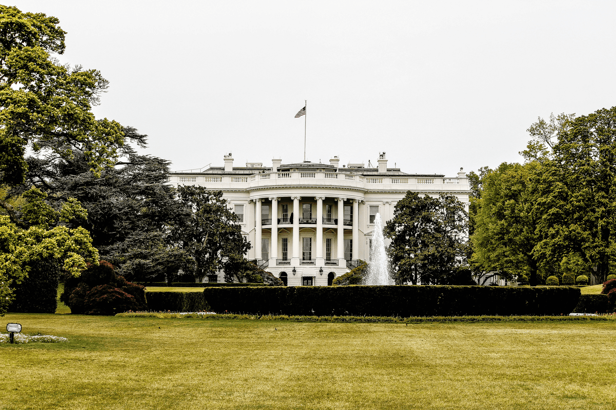The White House Trends BrandGraph®After President Trump Tests Positive for COVID-19