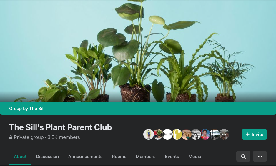 Facebook Groups: The Sill's Plant Parent Club