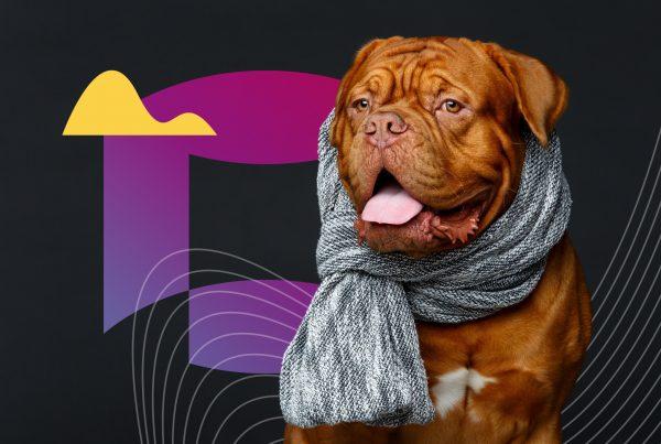 Top Dog Fashion Influencers